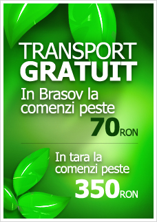 Transport gratuit in Brasov la comenzi peste 70RON
